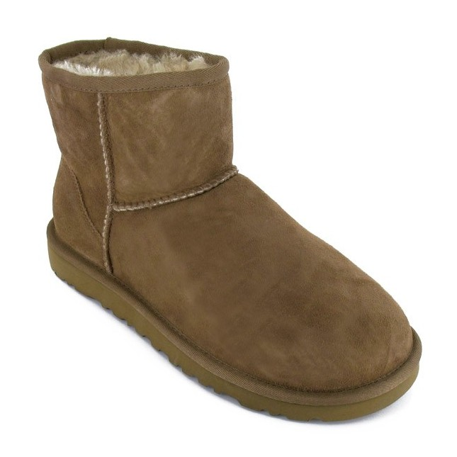 Boots / Bottines Classic Mini Women